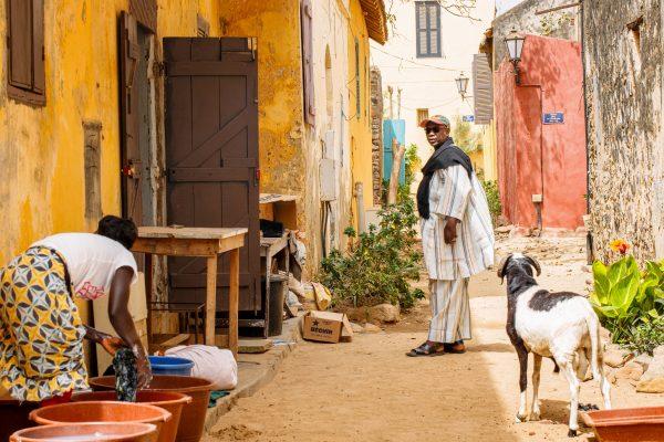 best options for sending money to Senegal